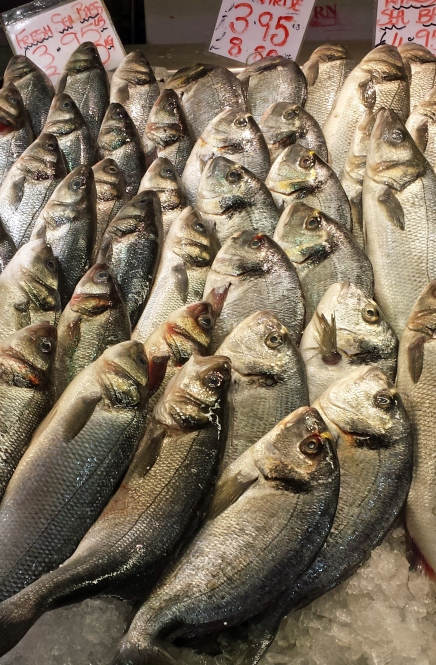 MarketSeaBass