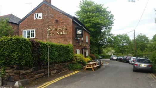 SwanwithTwoNicks
