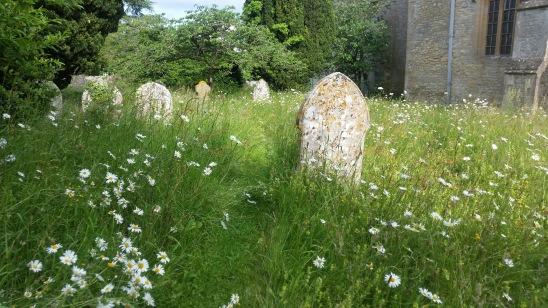 Wild Graveyard