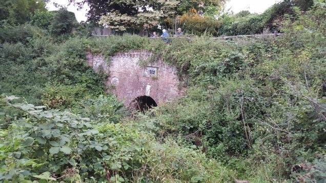 TunnelMouth